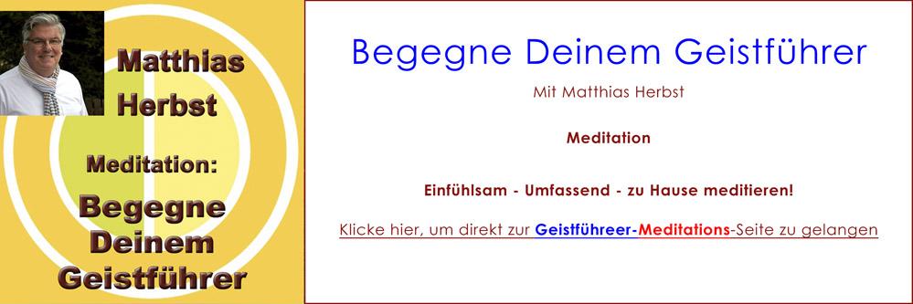 DelphinTV - Matthias Herbst - Begegne Deinem Geistführer