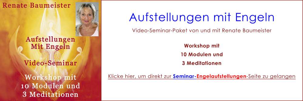 DelphinTV - Video-Paket Aufstellungen mit Engeln Video-Seminar Renate Baumeister