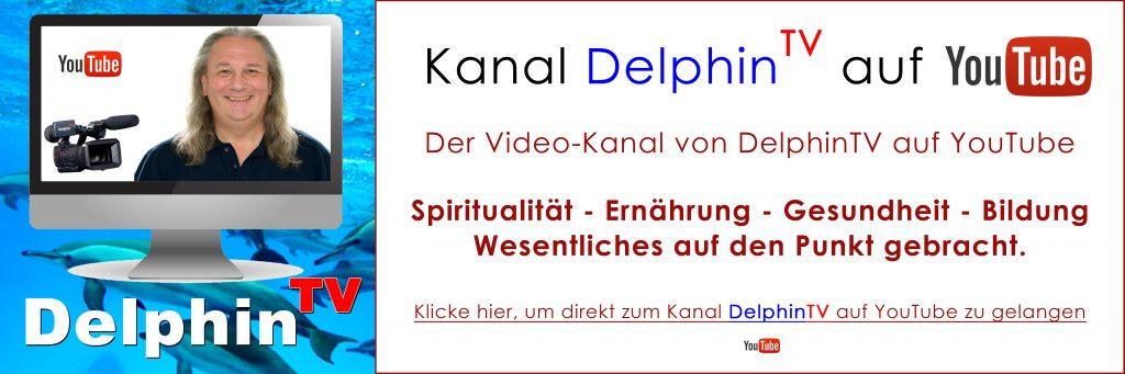 Andreas Klein | DelphinTV